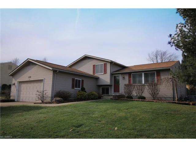 1319 Patton Ct, Twinsburg, OH 44087 (MLS #3963741) :: Keller Williams Chervenic Realty