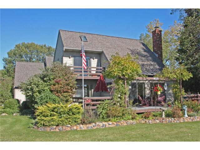 909 Lakeshore, Kelleys Island, OH 43438 (MLS #3964020) :: Tammy Grogan and Associates at Cutler Real Estate