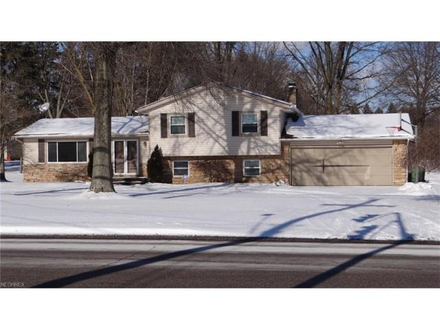 495 East Ave, Tallmadge, OH 44278 (MLS #3964834) :: Tammy Grogan and Associates at Cutler Real Estate