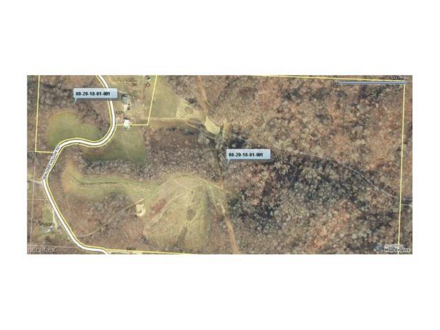 Fattler Ridge, Sealover Hollow Rd, Philo, OH 43771 (MLS #3964850) :: Keller Williams Chervenic Realty