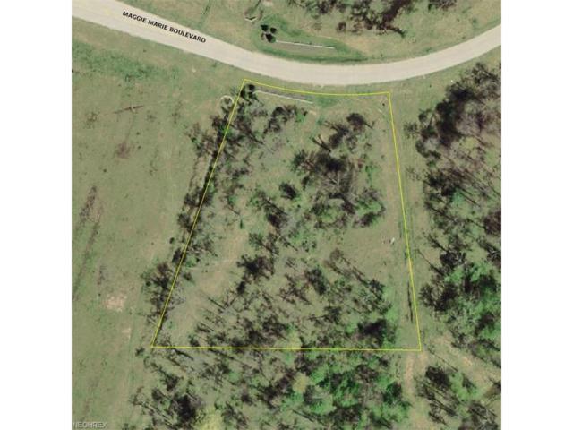 4562 Maggie Marie Blvd, Medina, OH 44256 (MLS #3964851) :: Tammy Grogan and Associates at Cutler Real Estate