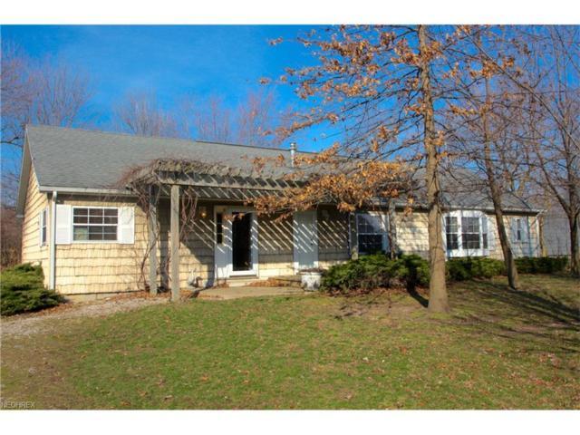 219 Mcgettigan, Kelleys Island, OH 43438 (MLS #3964973) :: Tammy Grogan and Associates at Cutler Real Estate