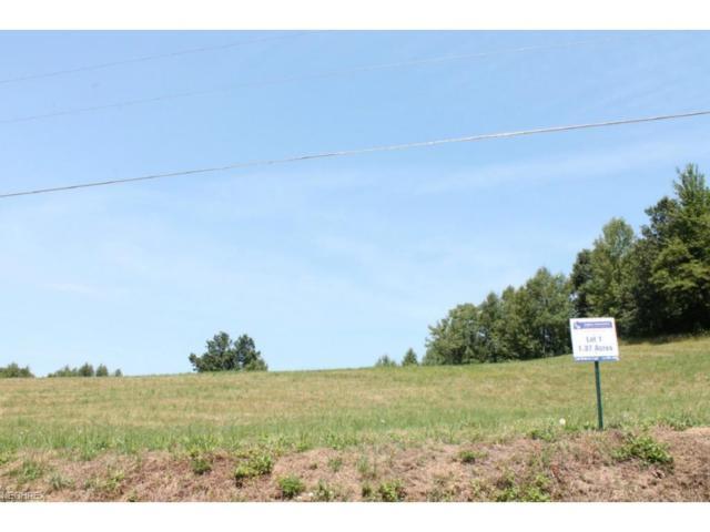 Lot 1 Dietz, Zanesville, OH 43701 (MLS #3965205) :: RE/MAX Edge Realty
