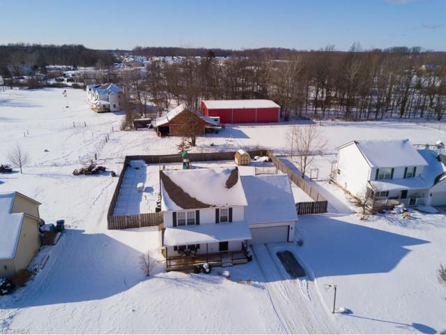 5956 Sandelwood Ave, North Ridgeville, OH 44039 (MLS #3965210) :: Tammy Grogan and Associates at Cutler Real Estate