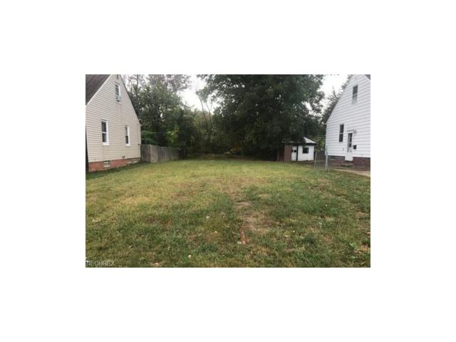 8207 Newport Ave, Parma, OH 44129 (MLS #3965405) :: Tammy Grogan and Associates at Cutler Real Estate