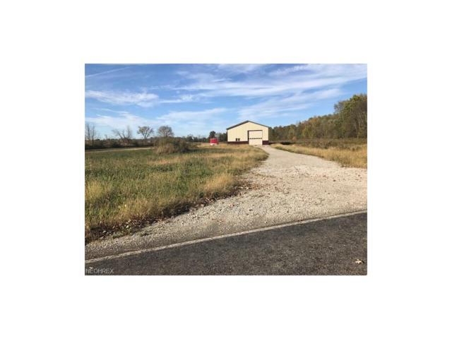 5805 Buffham Rd, Seville, OH 44273 (MLS #3965413) :: Tammy Grogan and Associates at Cutler Real Estate