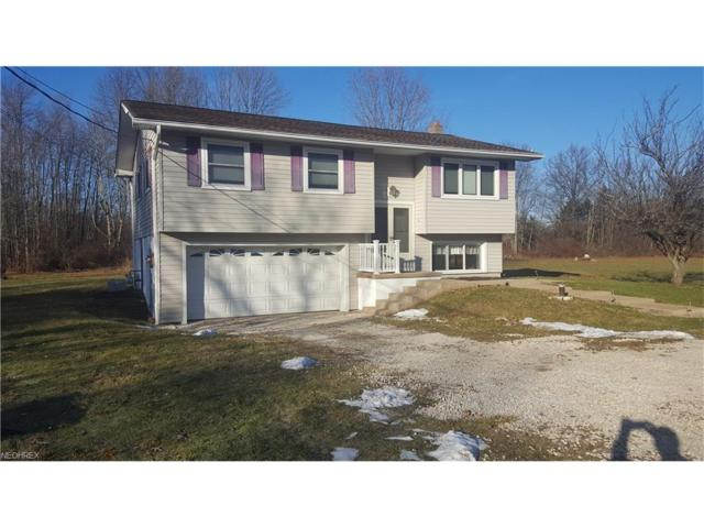 5904 State, Wadsworth, OH 44281 (MLS #3965674) :: Keller Williams Chervenic Realty