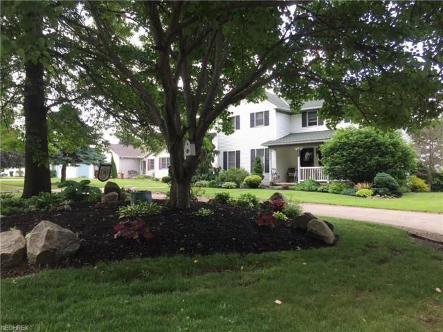 461 Silvercreek Rd, Wadsworth, OH 44281 (MLS #3966208) :: Keller Williams Chervenic Realty