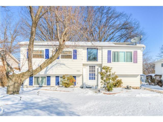 1985 E 42nd St, Lorain, OH 44055 (MLS #3966246) :: Tammy Grogan and Associates at Cutler Real Estate