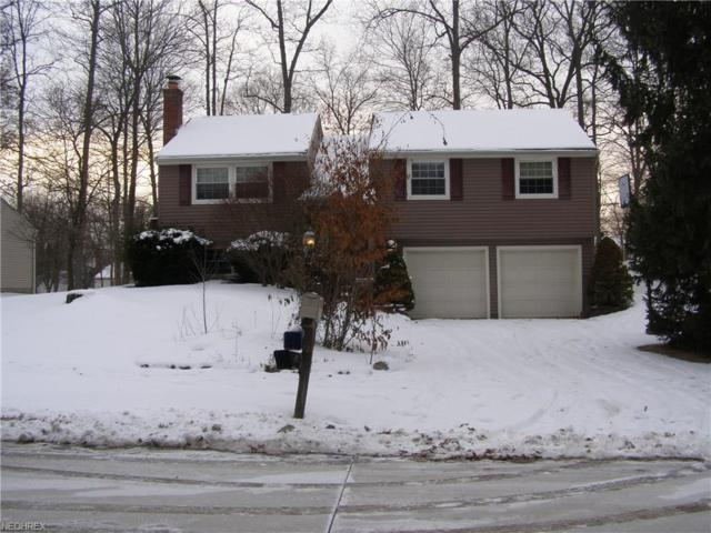 4682 Dresher Trl, Stow, OH 44224 (MLS #3966334) :: Tammy Grogan and Associates at Cutler Real Estate