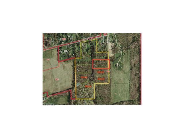 8633 Hunters Ridge Run, Wadsworth, OH 44281 (MLS #3966368) :: Keller Williams Chervenic Realty