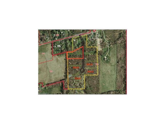 S/L-2 Hunters Ridge Run, Wadsworth, OH 44281 (MLS #3966372) :: Keller Williams Chervenic Realty