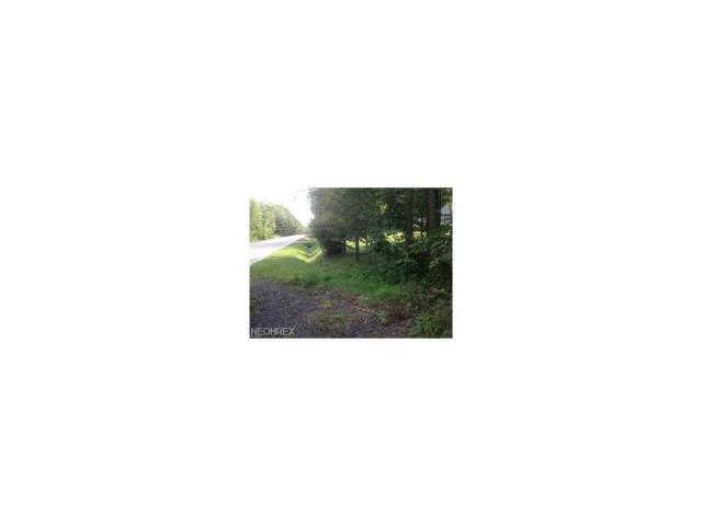 13726 Aquilla Rd, Burton, OH 44021 (MLS #3966463) :: Keller Williams Chervenic Realty