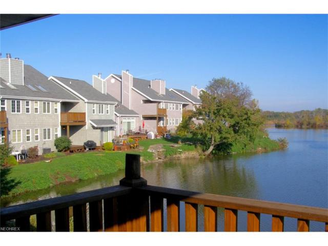 111 W Lakeshore 3D, Kelleys Island, OH 43438 (MLS #3966524) :: Tammy Grogan and Associates at Cutler Real Estate