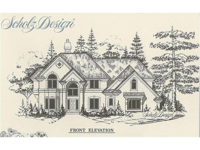 TBD Lake, Avon Lake, OH 44012 (MLS #3966697) :: Tammy Grogan and Associates at Cutler Real Estate
