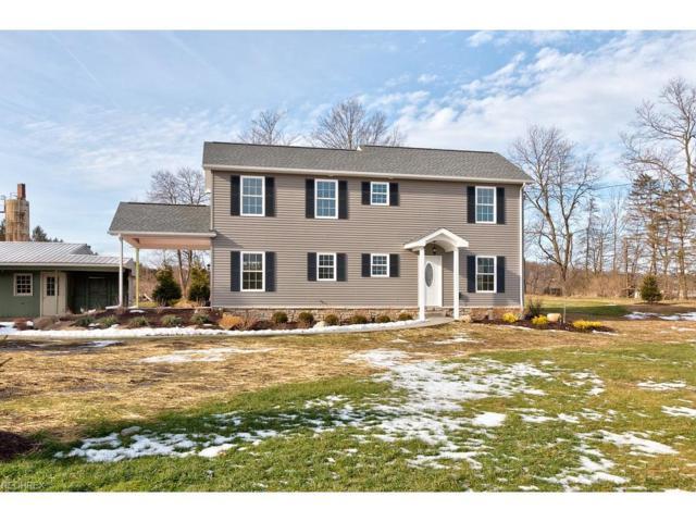 9501 Elliman Rd, Mantua, OH 44255 (MLS #3966743) :: Tammy Grogan and Associates at Cutler Real Estate