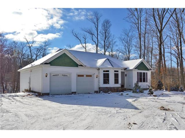 8060 Norton Rd, Garrettsville, OH 44231 (MLS #3966744) :: Tammy Grogan and Associates at Cutler Real Estate