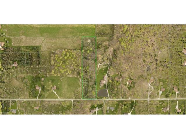 Crackel Rd, Aurora, OH 44202 (MLS #3966761) :: Tammy Grogan and Associates at Cutler Real Estate