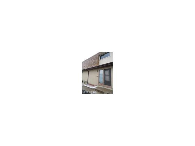 5221 Cline Rd C, Kent, OH 44240 (MLS #3966824) :: Keller Williams Chervenic Realty