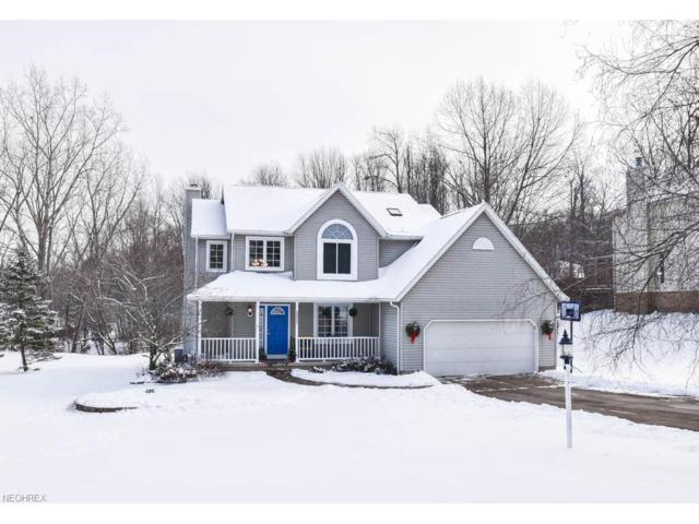 6917 Pine Knoll Dr, Clinton, OH 44216 (MLS #3966908) :: Tammy Grogan and Associates at Cutler Real Estate
