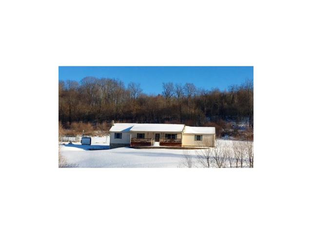 6084 Terrace Rd SW, Sherrodsville, OH 44675 (MLS #3967012) :: Tammy Grogan and Associates at Cutler Real Estate
