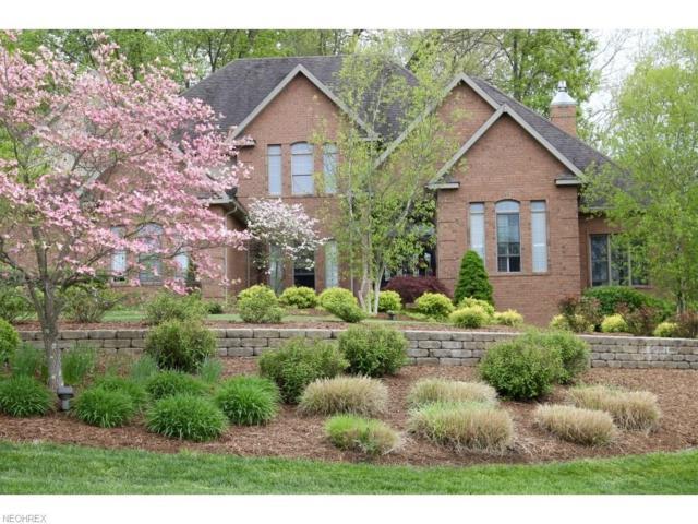 34 Alexander Dr, Williamstown, WV 26187 (MLS #3967016) :: Tammy Grogan and Associates at Cutler Real Estate