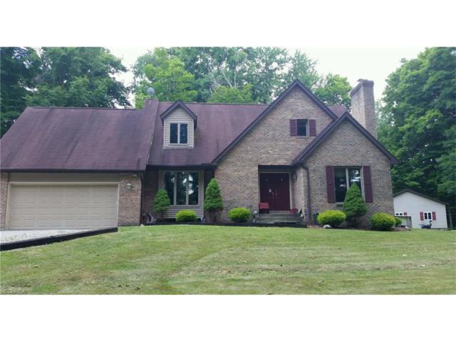 11821 Mumford, Garrettsville, OH 44231 (MLS #3967021) :: Tammy Grogan and Associates at Cutler Real Estate