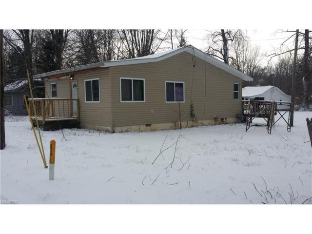 21 Bigelow Dr, Chippewa Lake, OH 44215 (MLS #3967066) :: The Crockett Team, Howard Hanna