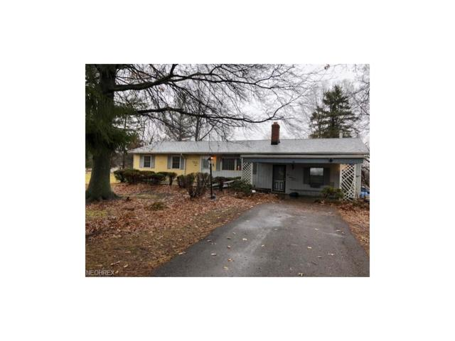 9491 Daniels Rd, Seville, OH 44273 (MLS #3967164) :: Tammy Grogan and Associates at Cutler Real Estate