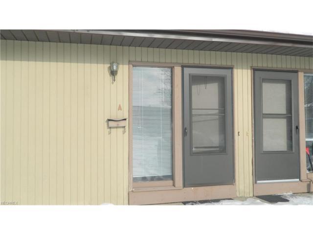 5221 Cline Rd A, Kent, OH 44240 (MLS #3967233) :: Keller Williams Chervenic Realty