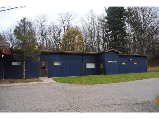 1319 Main St, Lakemore, OH 44250 (MLS #3967289) :: Tammy Grogan and Associates at Cutler Real Estate