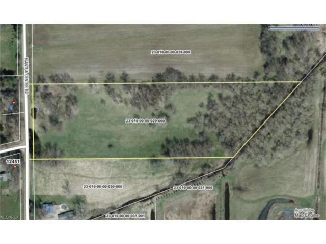 12472 Mantua Center, Mantua, OH 44255 (MLS #3967568) :: Tammy Grogan and Associates at Cutler Real Estate