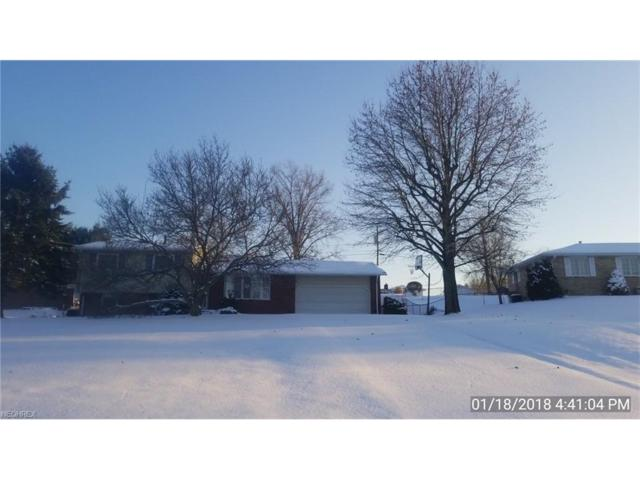3744 Highspire St NE, Canton, OH 44721 (MLS #3967626) :: Tammy Grogan and Associates at Cutler Real Estate