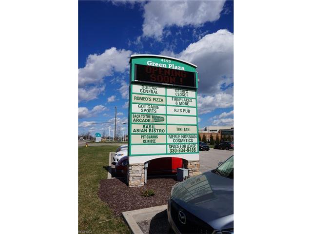 4195 Massillon Rd #219, Uniontown, OH 44685 (MLS #3967714) :: Keller Williams Chervenic Realty