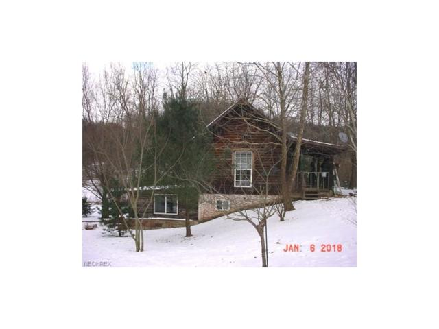 10870 Coshocton Rd, New Concord, OH 43762 (MLS #3967722) :: Tammy Grogan and Associates at Cutler Real Estate