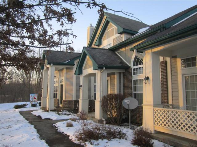 567 Azalea Cir 9C, Northfield, OH 44067 (MLS #3967882) :: Tammy Grogan and Associates at Cutler Real Estate