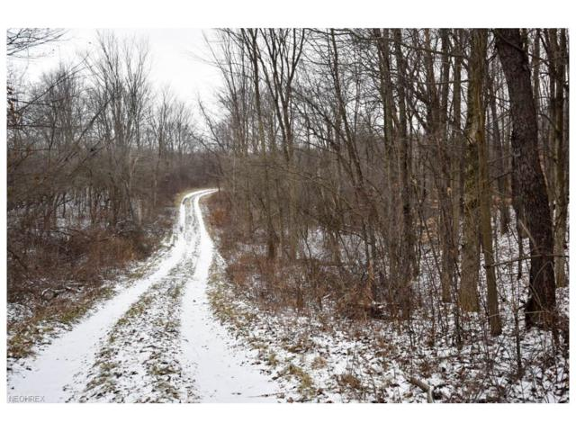 16770 Leffingwell Rd, Berlin Center, OH 44401 (MLS #3967914) :: RE/MAX Trends Realty