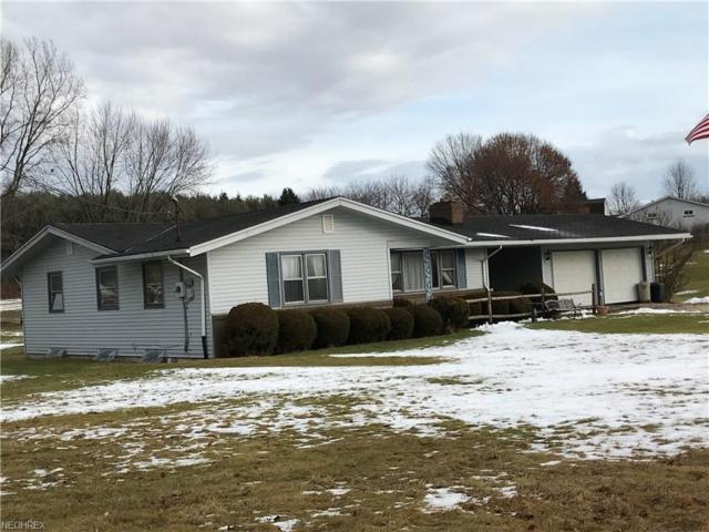 3237 N Pleasant Dr, East Palestine, OH 44413 (MLS #3968028) :: Tammy Grogan and Associates at Cutler Real Estate