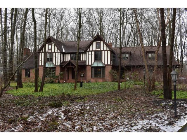 16500 Heatherwood Ln, Chagrin Falls, OH 44023 (MLS #3968375) :: Tammy Grogan and Associates at Cutler Real Estate