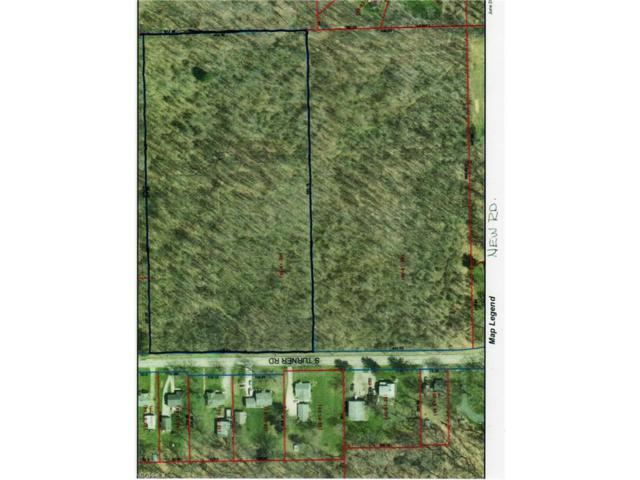 S Turner Rd, Austintown, OH 44515 (MLS #3968402) :: Tammy Grogan and Associates at Cutler Real Estate