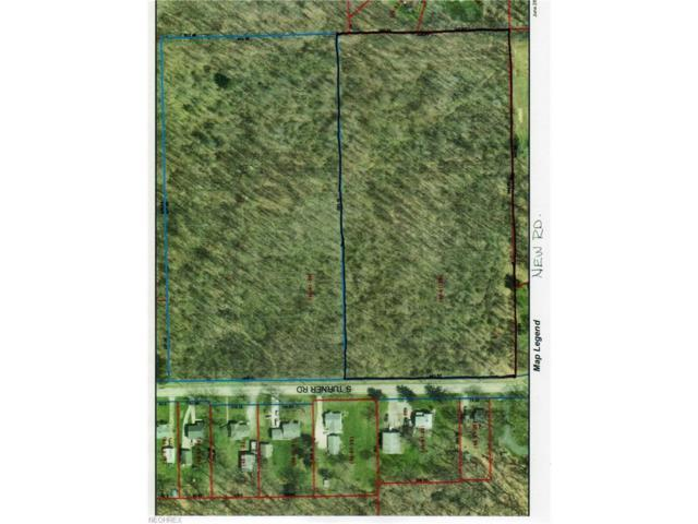 S Turner Rd, Austintown, OH 44515 (MLS #3968404) :: Tammy Grogan and Associates at Cutler Real Estate