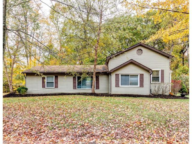 9360 N Star Rd, Kirtland, OH 44094 (MLS #3968520) :: The Crockett Team, Howard Hanna