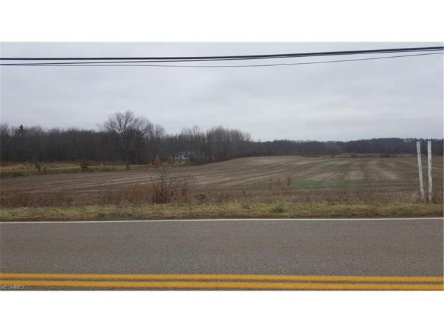 Plymouth Ridge Rd, Ashtabula, OH 44004 (MLS #3968890) :: PERNUS & DRENIK Team