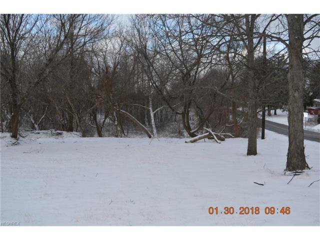 V/L S Cleveland Massillon Rd, Copley, OH 44321 (MLS #3968919) :: Tammy Grogan and Associates at Cutler Real Estate