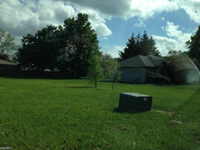 1009 Chrysann, Girard, OH 44420 (MLS #3969539) :: Tammy Grogan and Associates at Cutler Real Estate