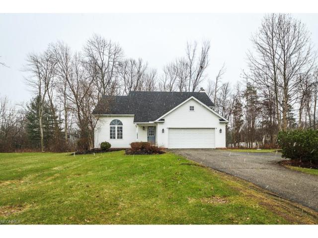 9834 Johnnycake Ridge Rd, Concord, OH 44060 (MLS #3969784) :: Tammy Grogan and Associates at Cutler Real Estate