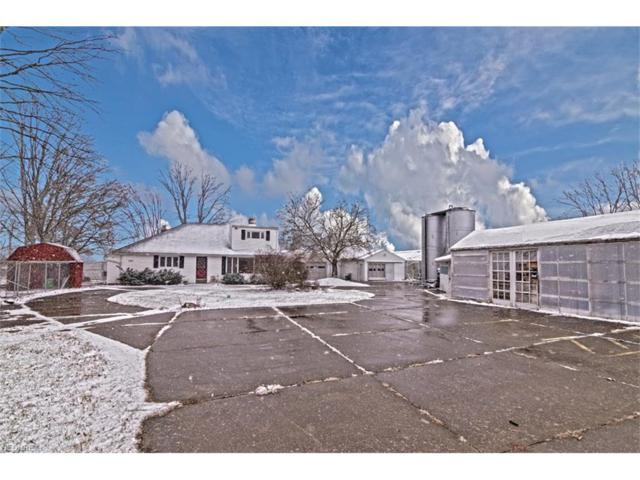 27085 Bagley Rd, Olmsted Township, OH 44138 (MLS #3969824) :: The Crockett Team, Howard Hanna