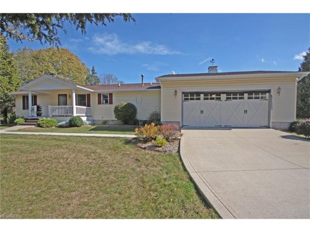 110 Pickerel, Kelleys Island, OH 43438 (MLS #3969856) :: Tammy Grogan and Associates at Cutler Real Estate