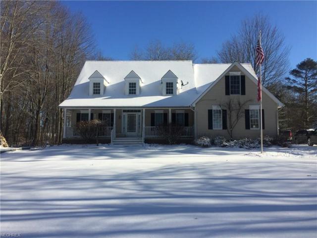 12554 Alpha Rd, Hiram, OH 44234 (MLS #3970053) :: Tammy Grogan and Associates at Cutler Real Estate