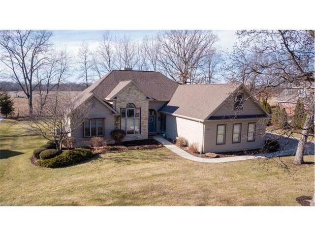 4408 Huntington Woods, Wooster, OH 44691 (MLS #3970061) :: Tammy Grogan and Associates at Cutler Real Estate